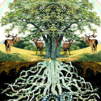 Images of the World Tree