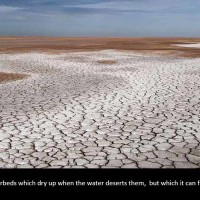 Archetypes and Riverbeds